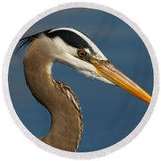 Head Of A Great Blue Heron Round Beach Towel