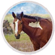 Head Shot Of A Wild Paint Horse Round Beach Towel