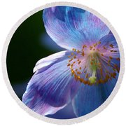 Round Beach Towel featuring the photograph Healing Light by Byron Varvarigos