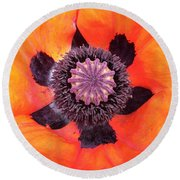 Heart Of A Poppy Round Beach Towel