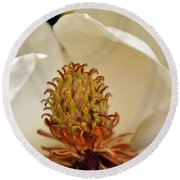 Heart Of Magnolia Round Beach Towel by Larry Bishop