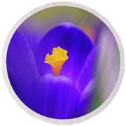 Heart Of The Crocus Round Beach Towel