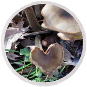 Round Beach Towel featuring the photograph Heart Of The Matter Smaller Pic by Marie Neder