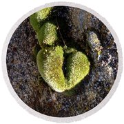 Moss Heart On A Chain Round Beach Towel