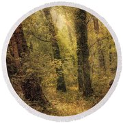 Round Beach Towel featuring the photograph Heaven's Glimmer by John Rivera
