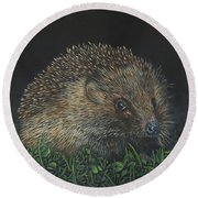 Hedgehog Round Beach Towel