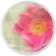 Heirloom Rose Round Beach Towel