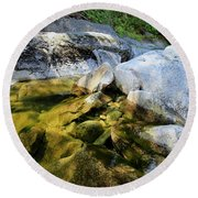 Round Beach Towel featuring the photograph Hello by Sean Sarsfield