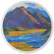 Round Beach Towel featuring the painting Henderson Canyon Borrego Springs by Diane McClary
