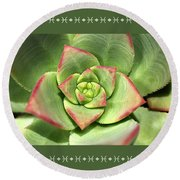 Hens And Chicks Succulent And Design Round Beach Towel