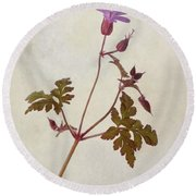 Herb Robert - Wild Geranium  #flower Round Beach Towel