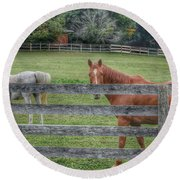 1007 - Here's Looking At You Round Beach Towel