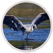 Heron Full Spread Round Beach Towel
