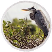 Heron In Nest Round Beach Towel