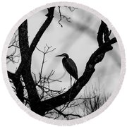 Heron In Tree Round Beach Towel