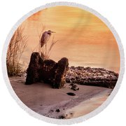 Round Beach Towel featuring the photograph Heron On The Rocks by Phil Mancuso