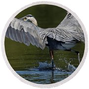 Heron On The Run Round Beach Towel