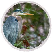 Heron Perched In Tree #2 Round Beach Towel