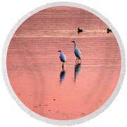 Herons At Sunrise Round Beach Towel