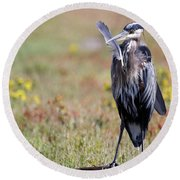 Herons Own Round Beach Towel