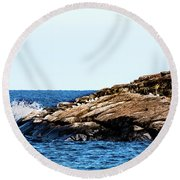 Herring Gull Picnic Round Beach Towel