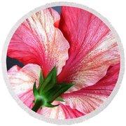 Hibiscus #5 Round Beach Towel