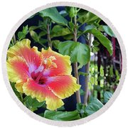 Hibiscus Bloom By The Red Trellis Round Beach Towel