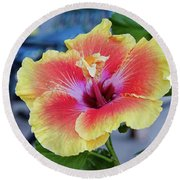 Hibiscus Bloom On The Patio Round Beach Towel