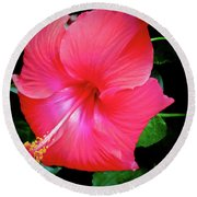 Hibiscus Blossom Round Beach Towel by Tony Grider
