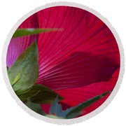 Round Beach Towel featuring the photograph Hibiscus by Charles Harden