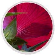 Hibiscus Round Beach Towel by Charles Harden