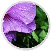 Round Beach Towel featuring the photograph Hibiscus Corner by Robert Knight