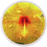 Hibiscus Flower After The Rain Round Beach Towel by Michael Courtney