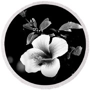 Round Beach Towel featuring the photograph Hibiscus In The Dark by Lori Seaman