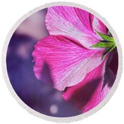Hibiscus In The Shadows Round Beach Towel