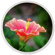 Hibiscus Rosa Sinensis Round Beach Towel by Michelle Meenawong