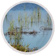 Hidden In The Grass The Wood Sandpiper  Round Beach Towel