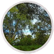 Round Beach Towel featuring the photograph High Forest by Mark Blauhoefer