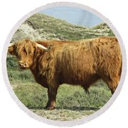 Highland Bull In The Noordhollandse Duinreservaat Round Beach Towel