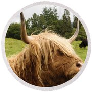 Round Beach Towel featuring the photograph Highland Coo by Christi Kraft