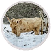 Highlander In Winter Round Beach Towel