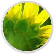 Highlight Sunflower Round Beach Towel