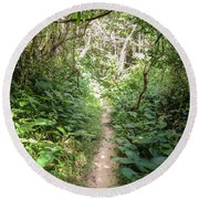 Hiking Path In The Atlantic Forest Round Beach Towel