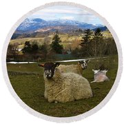 Hill Sheep Round Beach Towel