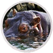 Hippo 3779_2 Round Beach Towel