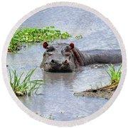 Hippo In The Serengeti Round Beach Towel