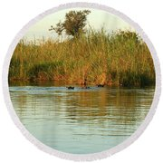 Hippos, South Africa Round Beach Towel