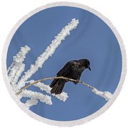 Hoarfrost And The Crow Round Beach Towel