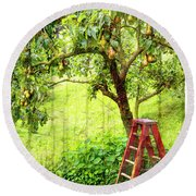 Hobbit Pear Tree Round Beach Towel