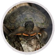Holding On Round Beach Towel by Kim Henderson